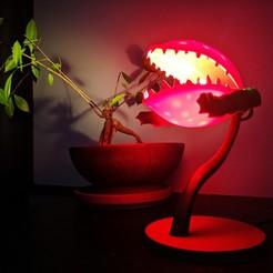IMG_20200422_152715.jpg Télécharger fichier STL gratuit Lampe à cracher les plantes • Design pour imprimante 3D, Superbeasti
