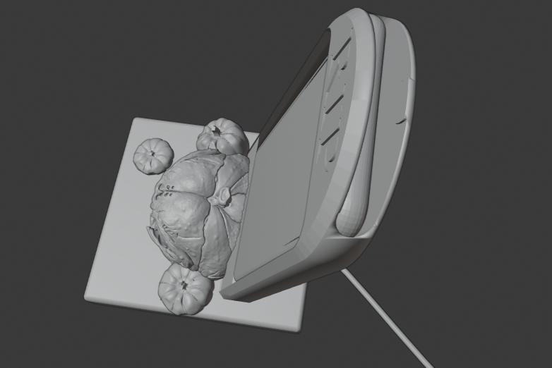Capture2.PNG Télécharger fichier STL gratuit Dock lugubre d'halloween tombe citrouille • Design pour impression 3D, Emile_Bedard