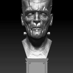 photo_2020-11-10_12-34-18 (2).jpg Download OBJ file Frank • 3D printable object, Marivi3d