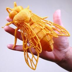 Descargar modelo 3D ZÁNGANO (APIS MELLIFERA), ANHELS-Natura