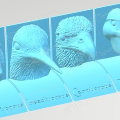 ocells dieta forma.jpg Download STL file Bird beaks and diets. English language. • Design to 3D print, ANHELS-Natura