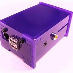 Download free STL file Raspberry Pi Enclosure, Gaygwenn