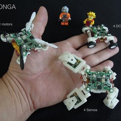 Download free 3D printer files Momonga, choimoni