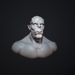 Download 3D printing models Scandinavian Troll Bust, digitalscattersolutions