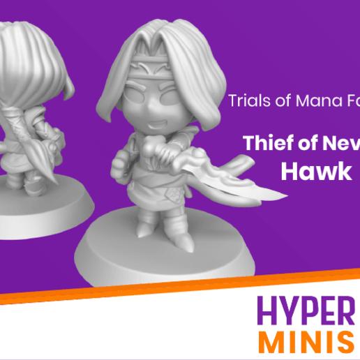 Thief_of_Nevarl_Hawk_2.png Download free STL file Chibi Hawk | Trials of Mana (Seiken Densetsu) • 3D print template, HyperMiniatures