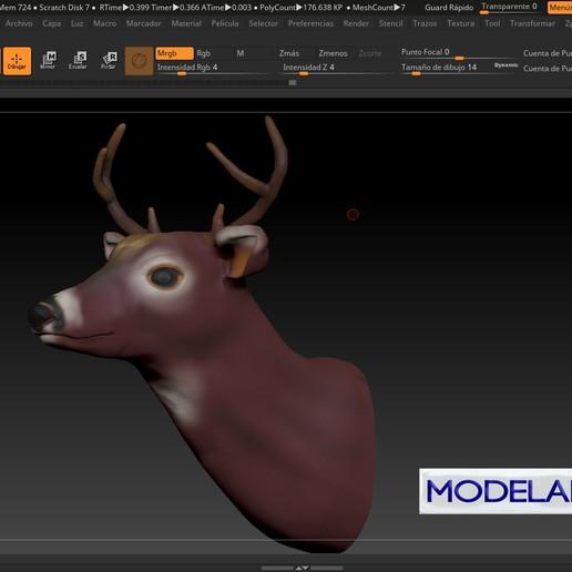 dfgd.jpg Télécharger fichier STL gratuit VENADO • Objet pour imprimante 3D, MODELADO_3D