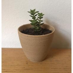 Landy_vase_striped_1.jpg Download STL file Landy vase - Striped 1 • 3D printable design, 3vprint
