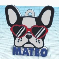 WhatsApp Image 2020-03-19 at 21.12.12.jpeg Download STL file PET TAG DOG GLASSES • 3D printing object, yoinererazo
