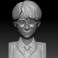 Captura de pantalla (253).png Download OBJ file Harry Potter Bust • Template to 3D print, Proyect3DPro