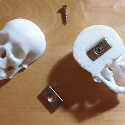 Crane.jpg Télécharger fichier STL gratuit Magnet Tete de mort • Plan pour imprimante 3D, franckober