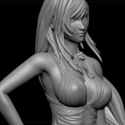 tifa-lockhart-purple-dress-final-fantasy-vii-remake-hidef-keyed-3d-model-stl (1).jpg Download STL file Tifa Lockhart PURPLE DRESS Final Fantasy VII REMAKE HIDEF KEYED 3D print model • 3D print design, danielign15