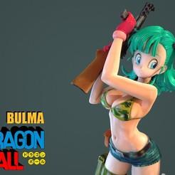 Bulma_001.jpg Télécharger fichier STL Bulma 3DScan • Objet pour imprimante 3D, blueday66