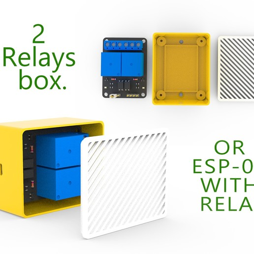 Download free STL file 2 relays box or ESP-01 with relay • 3D printer template, Ruvimkub