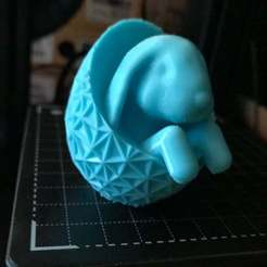 Download free 3D printer model Cute Rabbit in a Geometric Egg!, MakerMathieu