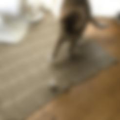 Télécharger fichier STL gratuit Jouet pour chat (coupé en deux) • Plan imprimable en 3D, MakerMathieu