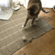 IMG_1782Cat.png Download free STL file Cat Toy (Split in half) • 3D print object, MakerMathieu