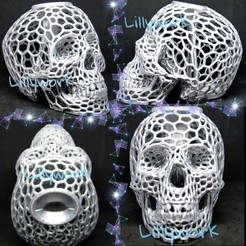 PicsArt_08-02-03.27.19.jpg Download free STL file Voronoi Skull bank with lid • 3D printable design, Lillywork