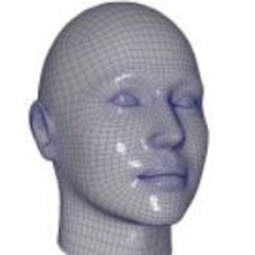 face.JPG Download free STL file face • Object to 3D print, omid2