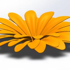 Download free 3D printer designs Flower, saraguo000