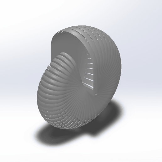 Download free 3D model Shell, saraguo000
