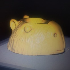 IMG_20200510_100945023.jpg Download 3MF file Mate Capybara Capybara • 3D printer model, aruchoam