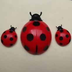 Download 3D printer templates ladybug fridge magnet, pgraaff