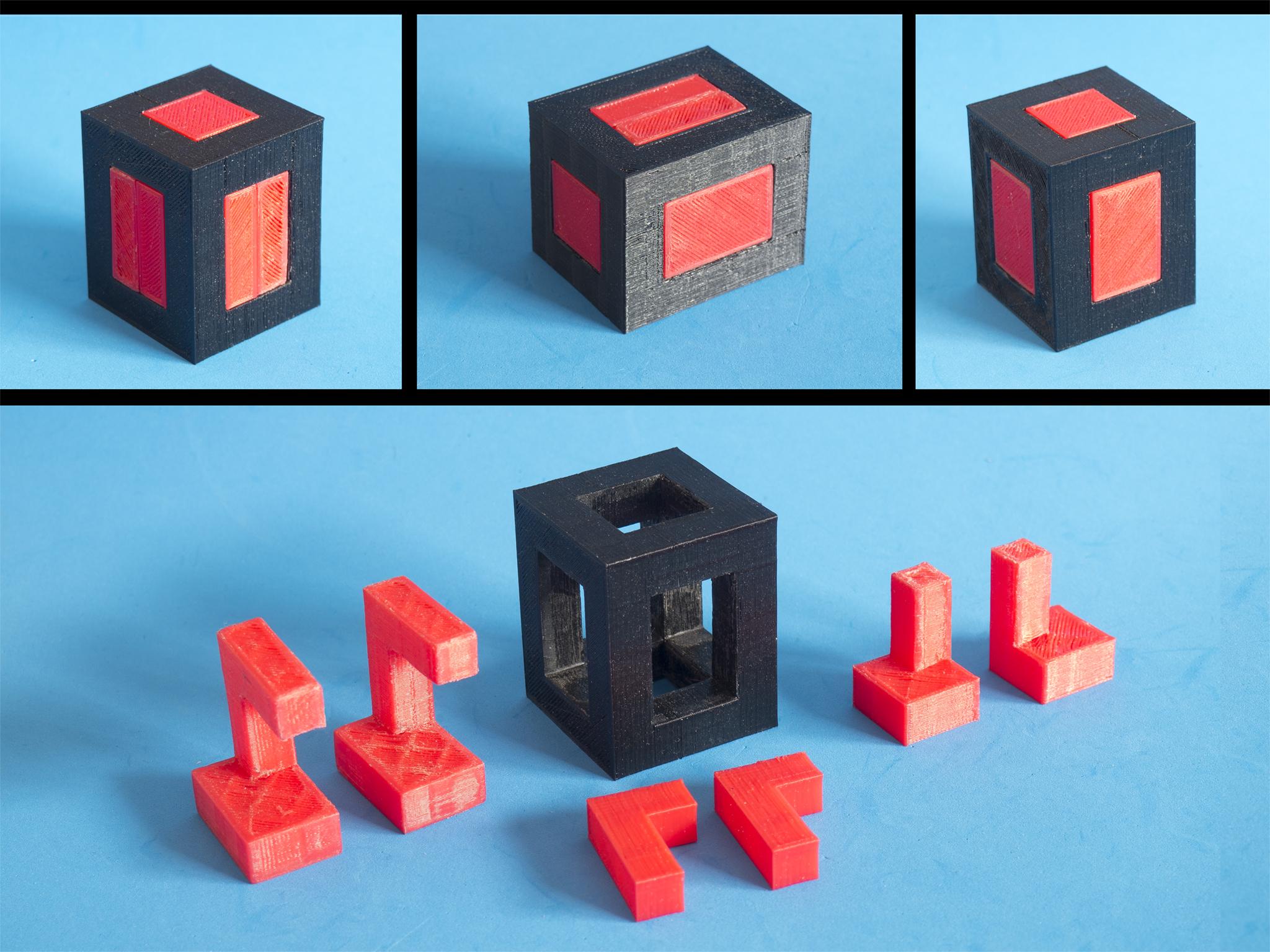 P3120005.jpg Download free STL file Puzzle - Triple twins • 3D print model, dancingchicken
