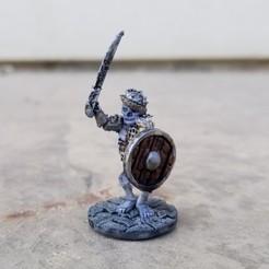 Sabre Shield Skeleton.jpg Télécharger fichier STL Guerrier squelette au sabre • Design pour impression 3D, Ellie_Valkyrie