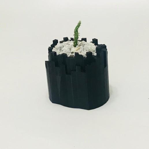 Impresiones 3D KINGDOM PLANTER, QBKO