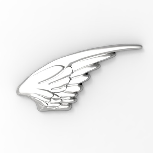 AILES r4.jpg Download STL file Wings in low relief angel bird sculpture plaster wood • Object to 3D print, Vape