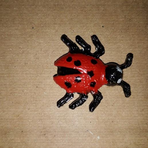 Download free 3D print files Bug, CO3RA