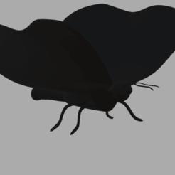 Télécharger fichier impression 3D Papillon, pabloezelivingston