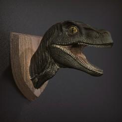 Download free STL files Raptor - Head Wall, STLProject