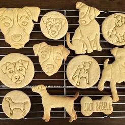 jack russel  (7).jpg Download STL file Cookie cutters and cookies stamps - Jack Russell terrier 13pcs • 3D printing design, Tvoritko