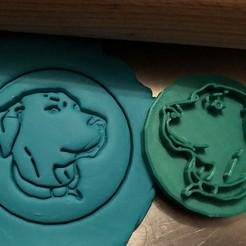 catahoula 2.jpg Télécharger fichier STL Timbre à biscuit + cutter - Catahoula Chien léopard II • Modèle pour imprimante 3D, Tvoritko