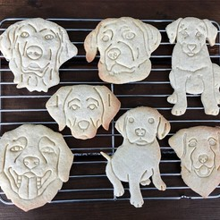 labrador  (12).jpg Download STL file Cookie cutters and cookies stamp - Labrador 17pcs • 3D printer template, Tvoritko