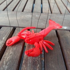 picture (1).jpg Download free STL file Lobster marionette • 3D printable model, Janis_Bruchwalski
