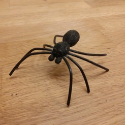 Picture (1).jpg Download free STL file Spider • 3D print object, Janis_Bruchwalski