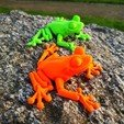Download STL file Cute Flexi Print-in-Place Frog • Template to 3D print, johnhdk61