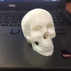 Descargar modelo 3D gratis To Make or not to Make, zagocomercial2
