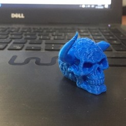Download free STL file Skull with horns. • 3D printer template, zagocomercial2