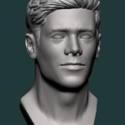 Captura.PNG Télécharger fichier STL Flash bust (Grant gustin) - barry allen • Objet pour impression 3D, ccsan
