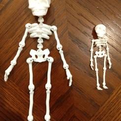 Download STL file Cute Flexi Print-in-Place Skeleton • 3D printable template, jasoncoon