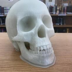 Télécharger fichier imprimante 3D gratuit Faire ou ne pas faire, potts