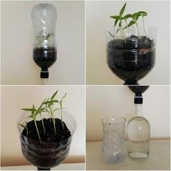 Impresiones 3D gratis Sistema hidropónico pasivo para plantones, TresaRyGoul
