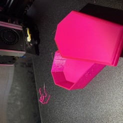 Download free 3D printing models Fish Coffin Box, splatmonster
