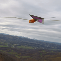Quetzal_1er_vol.png Download free STL file Quetzal RC glider • 3D printer design, LaurentL