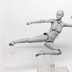Download STL file Lady Figure the 3D printed female action figure • Model to 3D print, Adel85