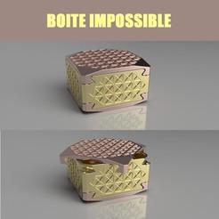 Impossible 2VuesTitrees.jpg Download STL file Impossible box double compartment • 3D printer model, seb-briand