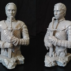 print_Screen.jpg Download STL file Brienne of Tarth • Object to 3D print, Todo